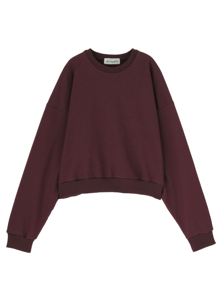 VOLUME SLEEVE PULLOVER(ボルドー-F)